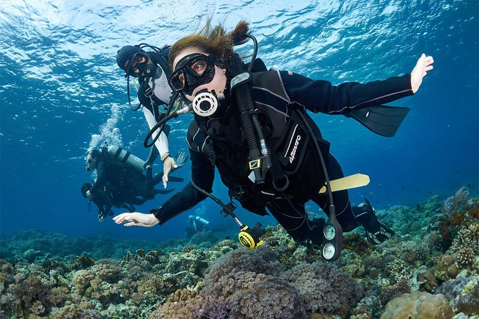 Weighing the Facts and Opinions on Scuba Diving Safety