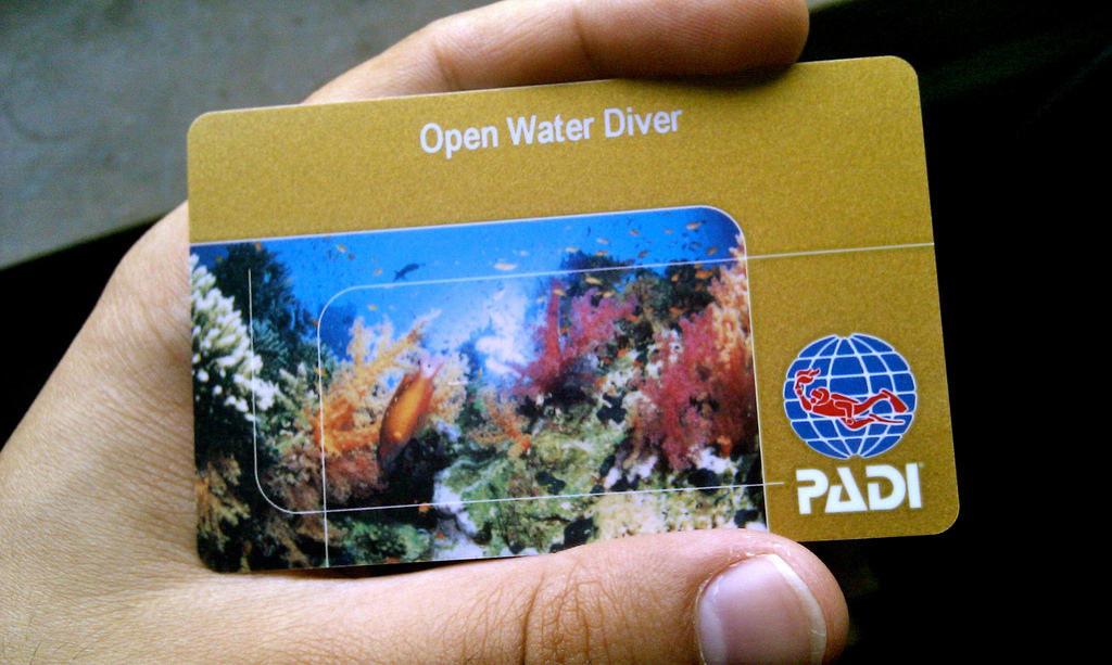 open water diver card