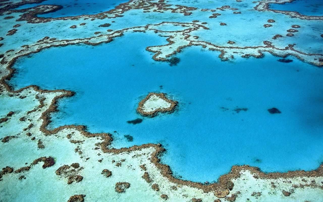 reef with heart shape island