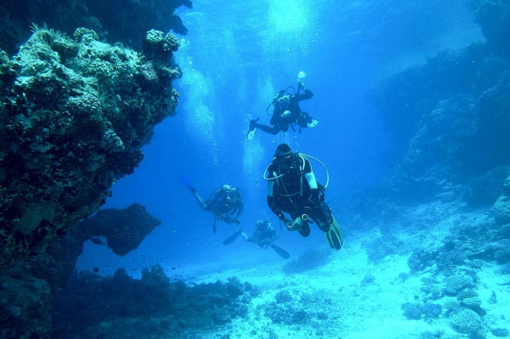 the three person scuba diving in the deep of the ocean