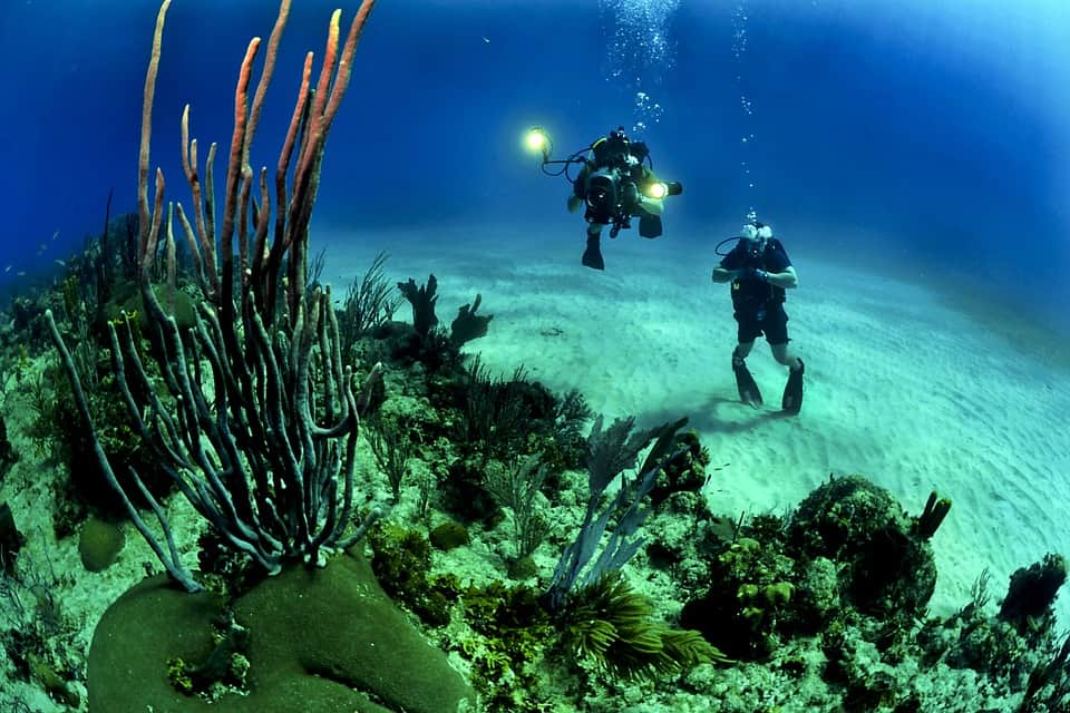 men scuba diving with diving equipment